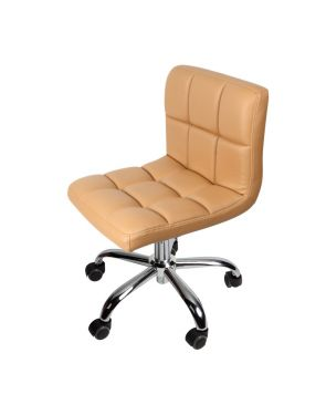 Technician Chair DS-C1-2