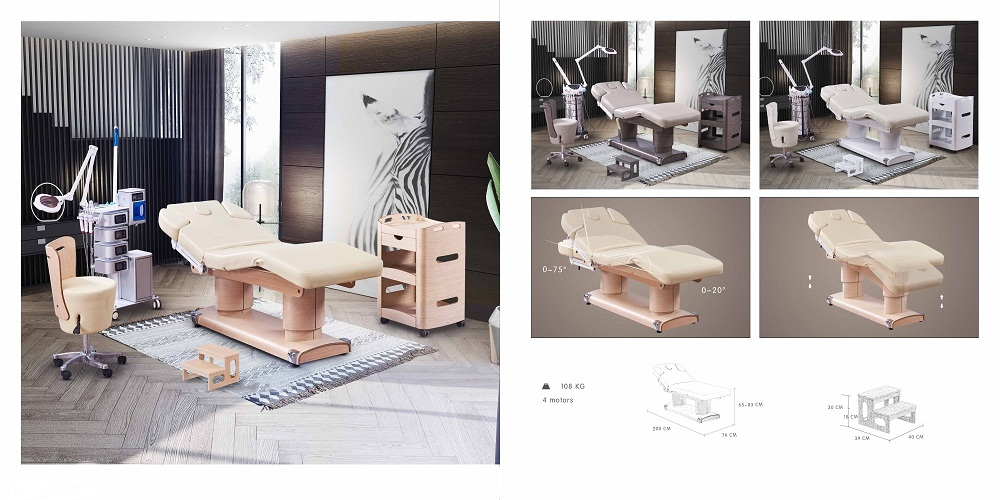 beauty salon electric massage facial bed 2 motors luxury electric bed for sale DS-M9006